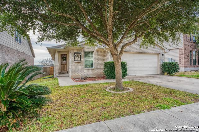 365 Cattle Run, Cibolo, TX 78108 (MLS #1354699) :: Exquisite Properties, LLC