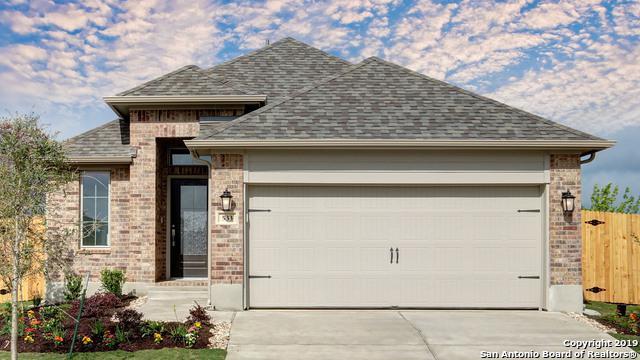 533 Lacey Oak Loop, San Marcos, TX 78666 (MLS #1355426) :: Erin Caraway Group