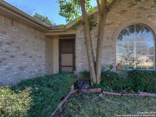 3824 Pheasant, Schertz, TX 78108 (MLS #1356600) :: Alexis Weigand Real Estate Group