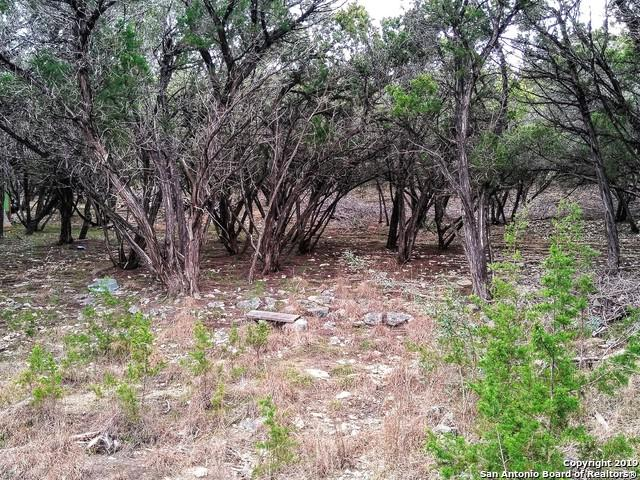 884 Brushy Creek Trail, Bandera, TX 78003 (MLS #1356775) :: Vivid Realty
