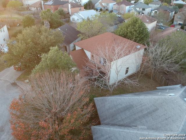 14410 Longleaf Palm, San Antonio, TX 78233 (MLS #1358242) :: Alexis Weigand Real Estate Group