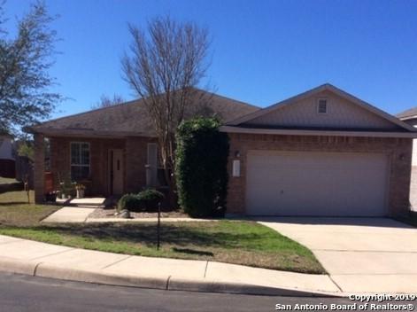 26147 Amber Sky, San Antonio, TX 78260 (MLS #1358477) :: Exquisite Properties, LLC