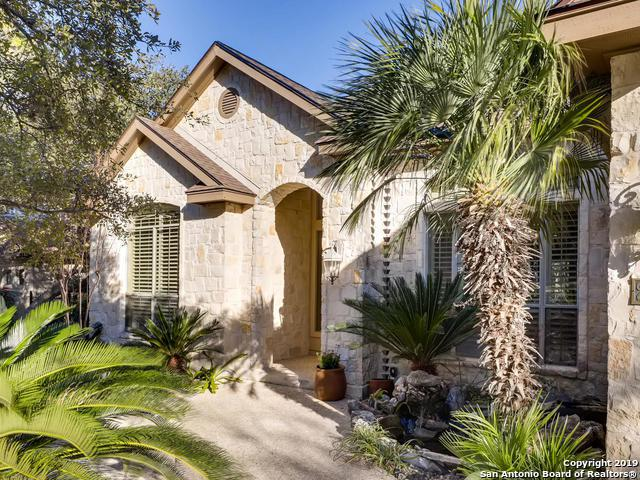 2918 Ivory Creek, San Antonio, TX 78258 (MLS #1359383) :: The Castillo Group