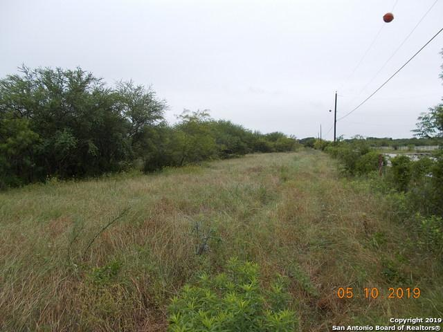 11025 AND 11278 Lower Seguin Road - Photo 1