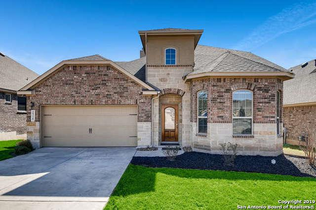 10338 Rocamora, Helotes, TX 78023 (MLS #1364167) :: Alexis Weigand Real Estate Group