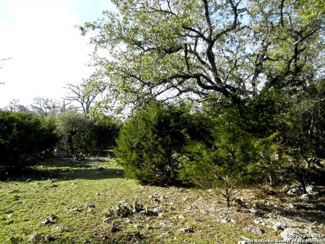 615 Rittimann Rd, Spring Branch, TX 78070 (MLS #1364989) :: Tom White Group