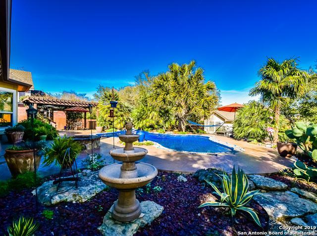 26326 Sunny Mdw, San Antonio, TX 78260 (MLS #1365043) :: Exquisite Properties, LLC