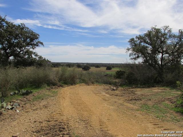 TBD Fm 1796, Dhanis, TX 78850 (MLS #1365428) :: Alexis Weigand Real Estate Group