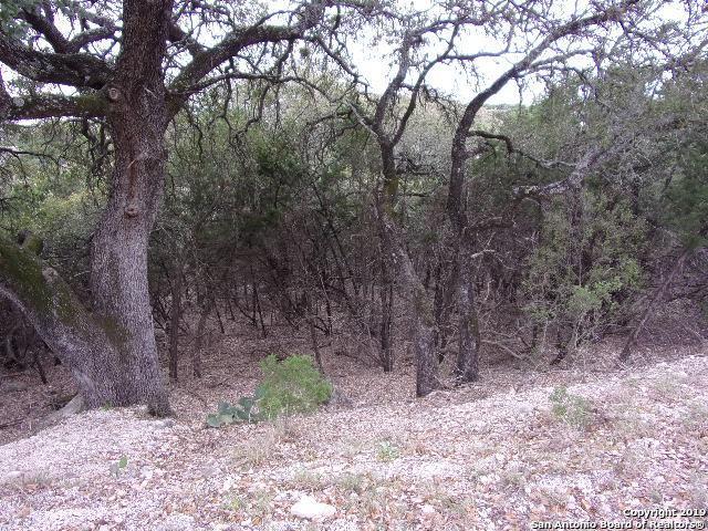 474/494/514 Herauf Dr, Canyon Lake, TX 78133 (MLS #1365912) :: Neal & Neal Team