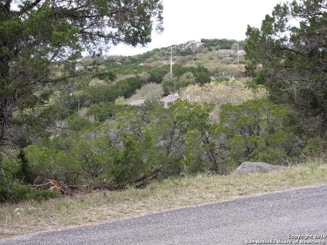 396/458 Herauf Dr, Canyon Lake, TX 78133 (MLS #1365929) :: Neal & Neal Team