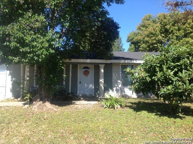 167 Paradise Valley, San Antonio, TX 78227 (MLS #1368428) :: Carter Fine Homes - Keller Williams Heritage