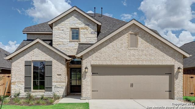 317 Lacey Oak Loop, San Marcos, TX 78666 (MLS #1370782) :: BHGRE HomeCity