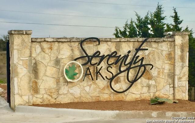 583 Rayner Ranch Blvd, Spring Branch, TX 78070 (MLS #1371172) :: Erin Caraway Group