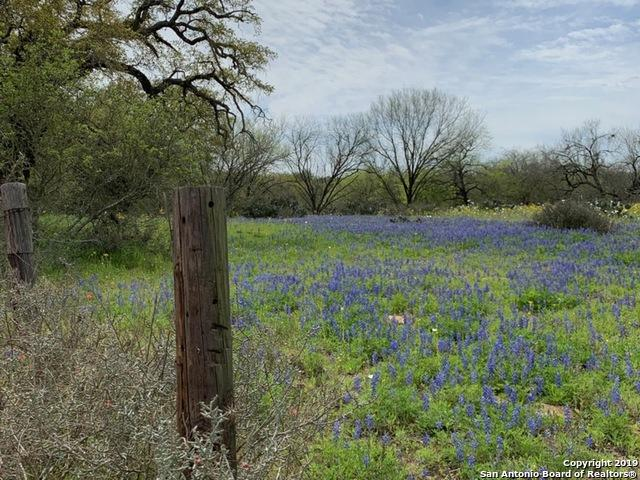 00 Whitley Rd, Bigfoot, TX 78005 (MLS #1371237) :: Tom White Group