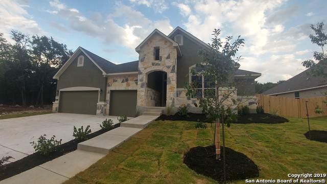 29509 Kearney Ridge, Boerne, TX 78015 (#1372379) :: The Perry Henderson Group at Berkshire Hathaway Texas Realty
