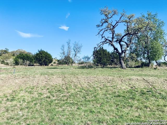 TBD LOT 30 Joshua Creek Cir, Comfort, TX 78013 (MLS #1373798) :: Alexis Weigand Real Estate Group