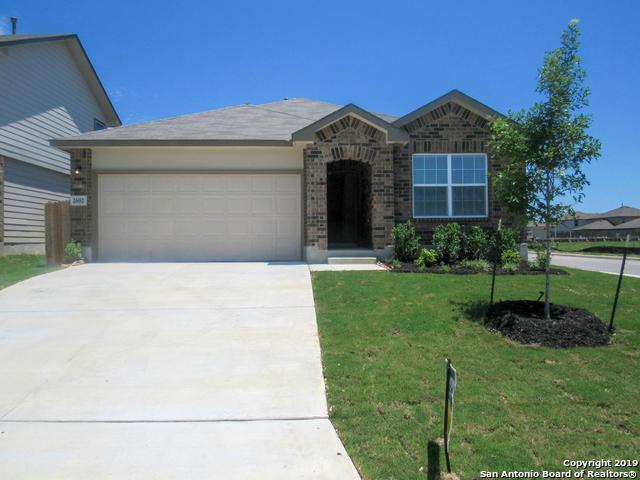 2602 Yaupon Ranch, San Antonio, TX 78244 (MLS #1378579) :: Tom White Group