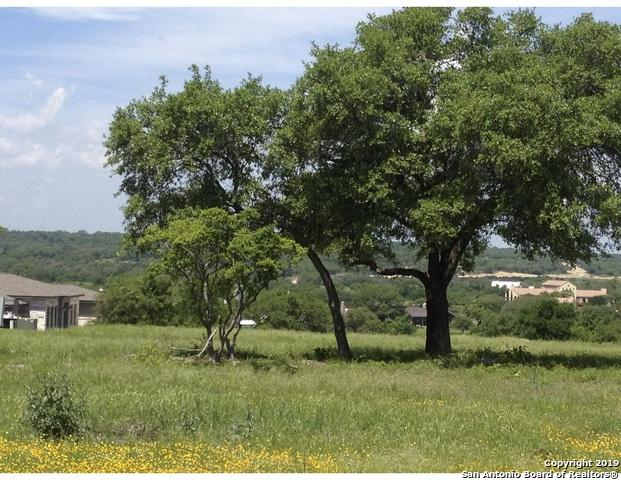 1508 Decanter Dr, New Braunfels, TX 78132 (MLS #1379214) :: Tom White Group