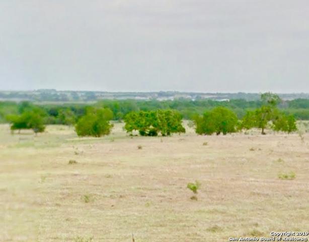 0 Fm 2102, Kenedy, TX 78119 (MLS #1380915) :: The Gradiz Group