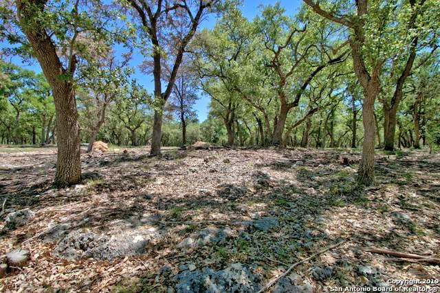 33807 Blanco Rd, Bulverde, TX 78163 (MLS #1381594) :: The Glover Homes & Land Group