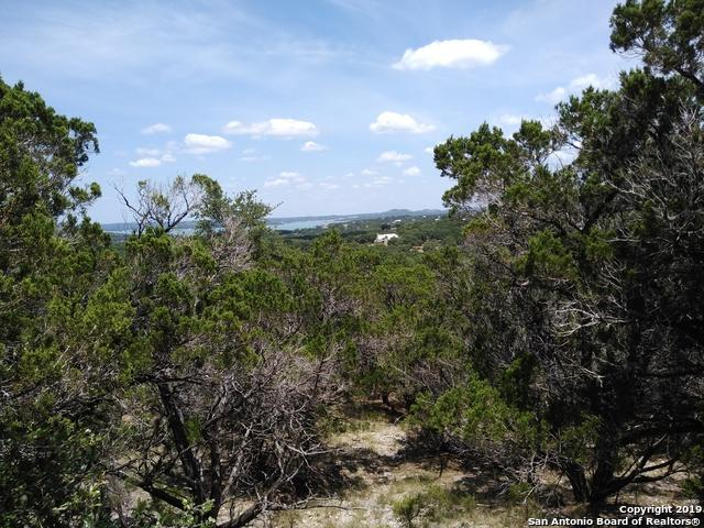 348 White Oak Dr, Canyon Lake, TX 78133 (#1381657) :: The Perry Henderson Group at Berkshire Hathaway Texas Realty