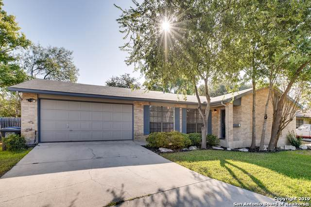 8702 Welles Dale Dr, San Antonio, TX 78240 (MLS #1381797) :: Santos and Sandberg