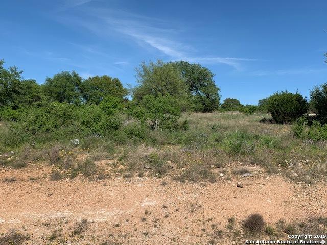 1820 Bardolino, New Braunfels, TX 78132 (MLS #1382106) :: The Castillo Group