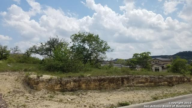 10116 Basilone Rdg, San Antonio, TX 78255 (MLS #1384242) :: Tom White Group