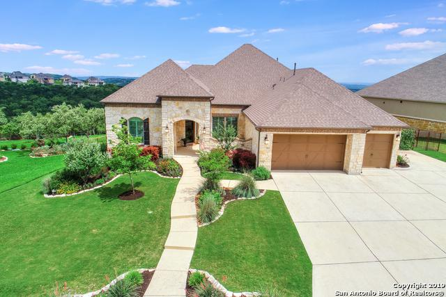 7903 Vanity Hill, San Antonio, TX 78256 (MLS #1387159) :: The Castillo Group
