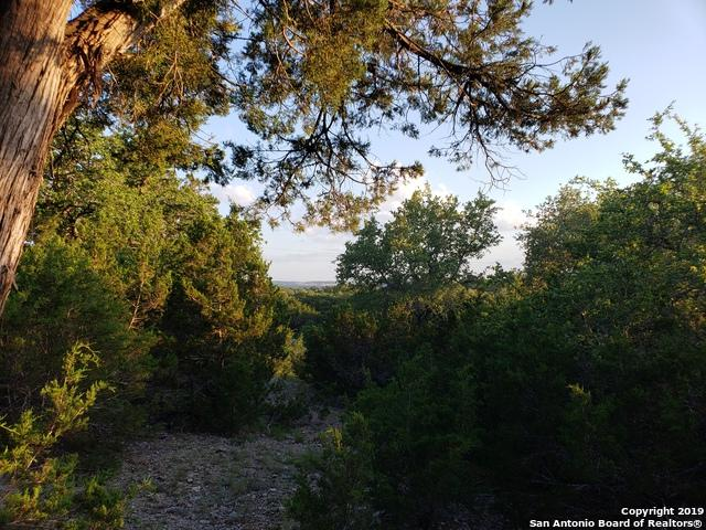 2515 Smoke Rise Canyon, Bulverde, TX 78163 (MLS #1387992) :: Vivid Realty
