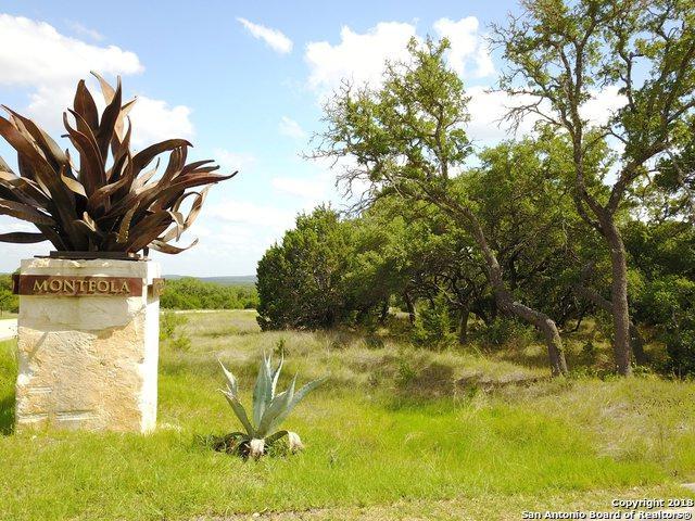1040 Monteola, Bulverde, TX 78163 (MLS #1388160) :: BHGRE HomeCity