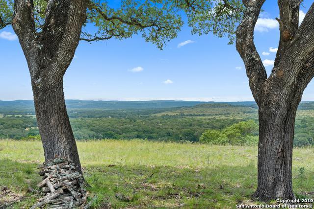 2222 Horton Preiss Rd, Blanco, TX 78606 (MLS #1390692) :: The Mullen Group | RE/MAX Access