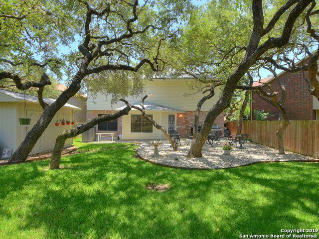 3511 Eagle Canyon Dr, San Antonio, TX 78247 (MLS #1392858) :: Vivid Realty