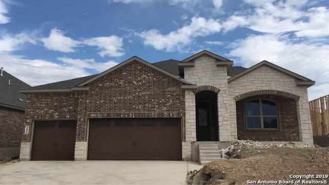 246 Sigel Ave, New Braunfels, TX 78132 (MLS #1394065) :: The Gradiz Group