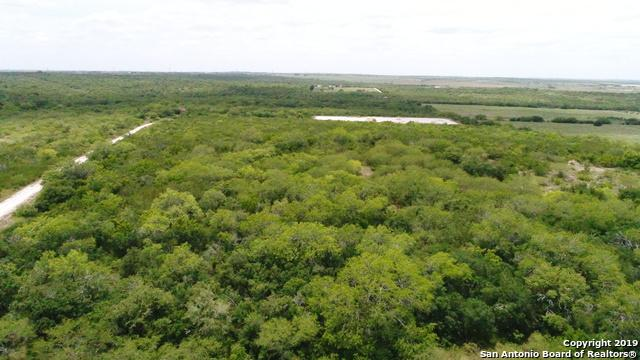 86 AC Cr 159, Kenedy, TX 78119 (MLS #1395306) :: Alexis Weigand Real Estate Group