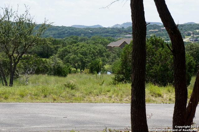 105 Santa Maria Ct, Canyon Lake, TX 78133 (MLS #1396185) :: Neal & Neal Team