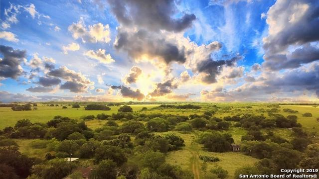 2376 Fm 1107, Stockdale, TX 78160 (MLS #1396510) :: The Mullen Group | RE/MAX Access
