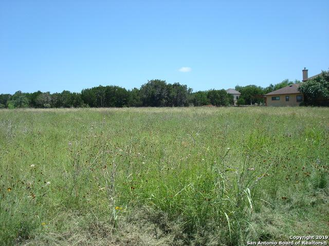 9707 Kopplin Rd, New Braunfels, TX 78132 (MLS #1396890) :: Alexis Weigand Real Estate Group