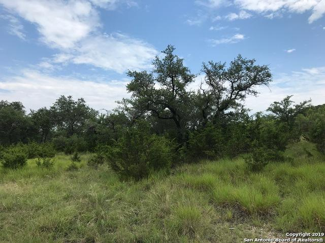 32431 Cedar View Dr, Bulverde, TX 78163 (MLS #1397058) :: The Castillo Group