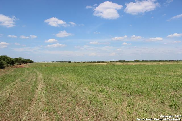 11 ACRE County Road 101, Pleasanton, TX 78064 (#1397760) :: The Perry Henderson Group at Berkshire Hathaway Texas Realty