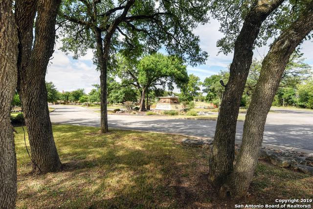 813 Gumnut Grove, New Braunfels, TX 78132 (MLS #1398273) :: Alexis Weigand Real Estate Group