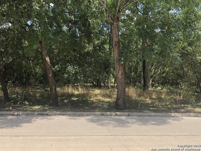 0 Alton Blvd, Selma, TX 78154 (MLS #1398616) :: Tom White Group
