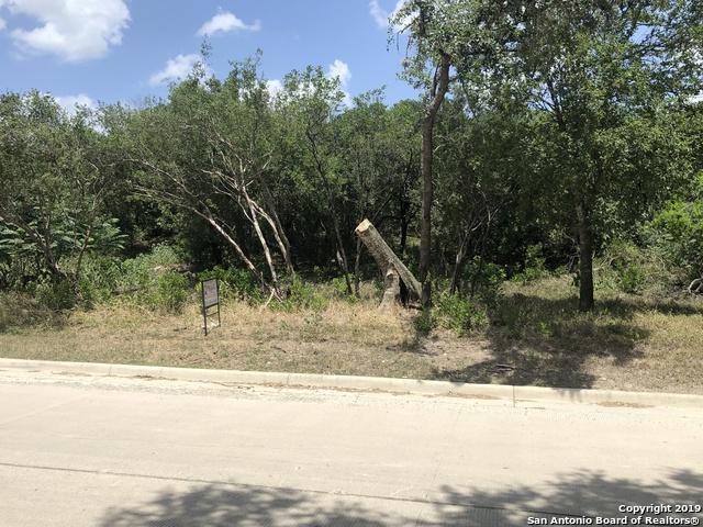0 Alton Blvd, Selma, TX 78154 (MLS #1398633) :: Tom White Group