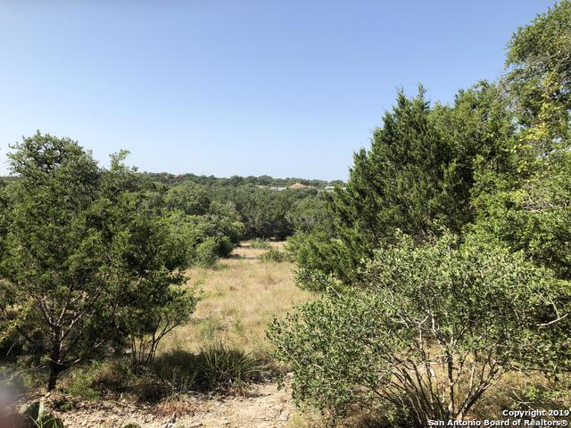 1094 Madrone Rd, Fischer, TX 78623 (MLS #1401241) :: Alexis Weigand Real Estate Group