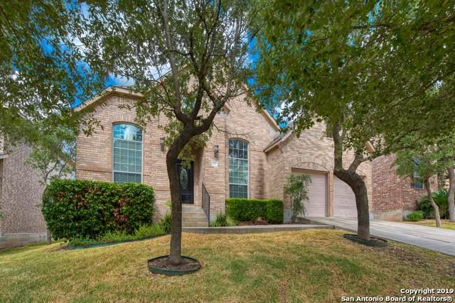 307 Waxberry Trail, San Antonio, TX 78256 (MLS #1404451) :: BHGRE HomeCity