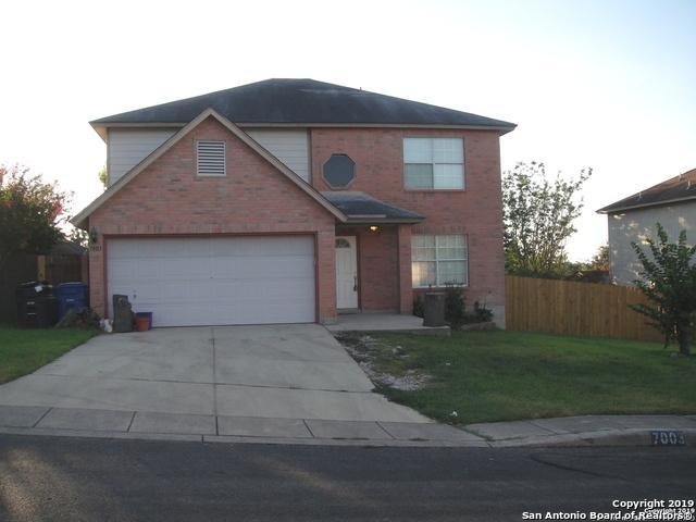 7003 Raintree Forest, San Antonio, TX 78233 (MLS #1405386) :: BHGRE HomeCity
