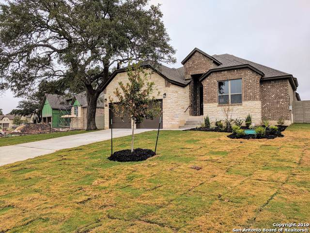 1259 Yaupon Loop, New Braunfels, TX 78132 (MLS #1406642) :: Alexis Weigand Real Estate Group