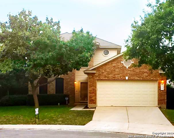 12914 Strong Cedar, Helotes, TX 78023 (MLS #1407455) :: Alexis Weigand Real Estate Group