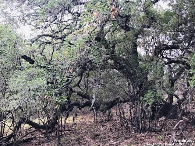 0 Saddle Tree, Bandera, TX 78003 (MLS #1408773) :: BHGRE HomeCity