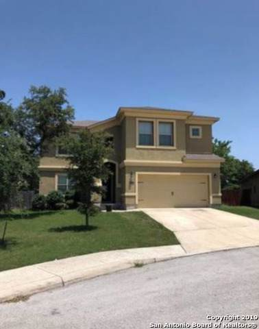 26102 Raven Feather, San Antonio, TX 78260 (MLS #1408803) :: Alexis Weigand Real Estate Group